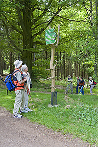 Nordic Walking in Thüringen